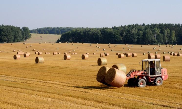 Der Landwirt, des Staates Knecht